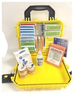 Waterproof First Aid Kit in Yellow Seahorse Case #F24-100AS